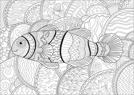 Colouring posters Clownfish