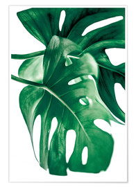 Poster  Monstera 6 - Mareike Böhmer Photography
