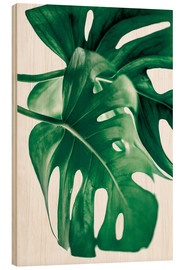 Wood  Monstera 6 - Mareike Böhmer Photography
