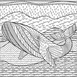 Colouring poster Patterned whale