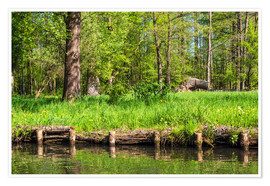 Premium poster Landscape in the Spreewald area, Germany