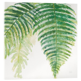 Acrylic print  Fern leaves III - Chris Paschke