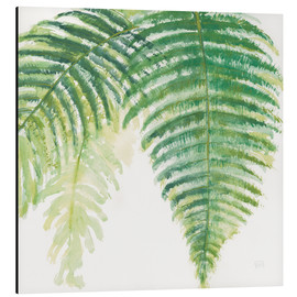 Aluminium print  Fern leaves III - Chris Paschke