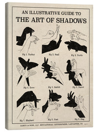 Canvas  The Art of Shadows - Mary Urban