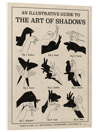 Foam board print  The Art of Shadows - Mary Urban