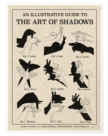 Poster  The Art of Shadows - Mary Urban
