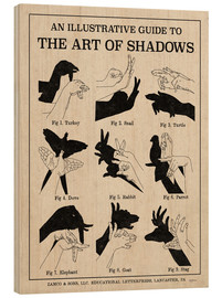 Wood print  The Art of Shadows - Mary Urban