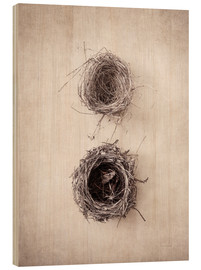 Wood print  Bird's Nest IV - Debra Van Swearingen
