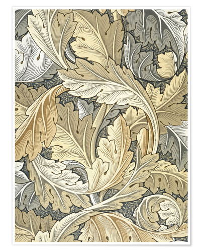 Poster Acanthus