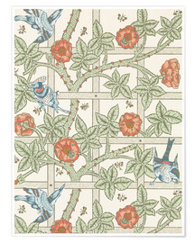 Poster  trellis - William Morris
