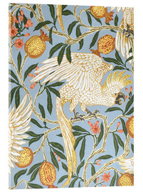 Acrylic print  Cockatoo and Pomegranate - Walter Crane