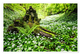 Poster Fairy Forest with wild garlic