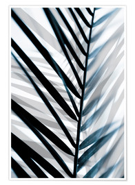 Premium poster Palm Leaves 18
