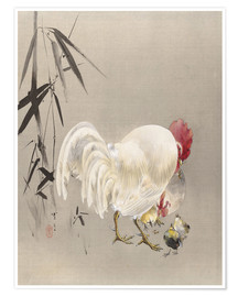 Premium poster Rooster and Hen with Chicks