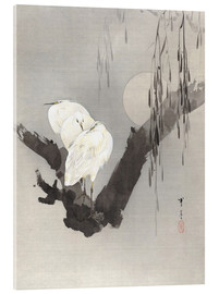 Watanabe Seitei -  egrets in a tree at night