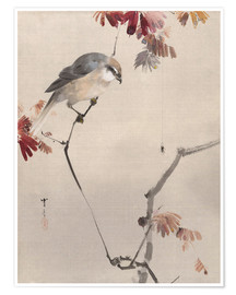 Premium poster  Bird on Branch Watching Spider - Watanabe Seitei