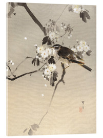 Acrylic glass  Bird on a Flowering Branch - Watanabe Seitei