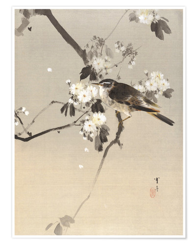 Premium poster Bird on a Flowering Branch