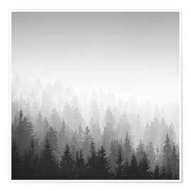 Premium poster Forest in fog