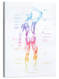 Canvas print  Rainbow muscles - Mod Pop Deco