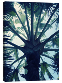 Canvas print  Tropical tranquillity - Angelo Cerantola