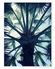 Premium poster Tropical tranquillity
