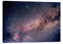 Canvas print  The Summer Triangle - Science Source