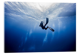 Image Source - Scuba diver in Cancun