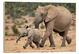 Wood print  African elephant and calf