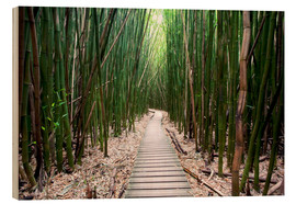 Wood  Trail through the bamboo forest - Pacific Stock