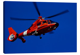 Canvas print  Coast Guard helicopter - Stocktrek Images