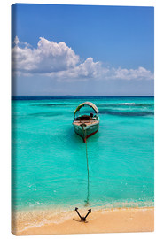 Canvas print  Moored excursion boat - Westend61