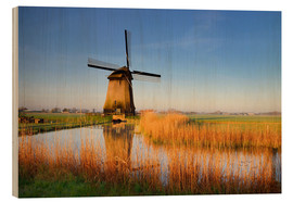 age fotostock - Traditional dutch windmill