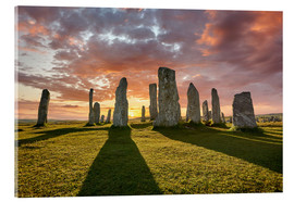 Acrylic print  The plants of Callanish - age fotostock