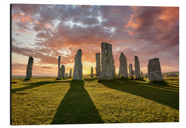 Alu-Dibond  The plants of Callanish - age fotostock