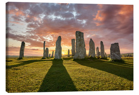 Canvas  The plants of Callanish - age fotostock