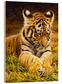 Wood print  Young tiger lying in grass