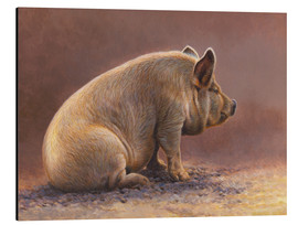 Aluminium print  Pig in the wallow