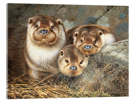 Acrylic glass  Otter family in the portrait