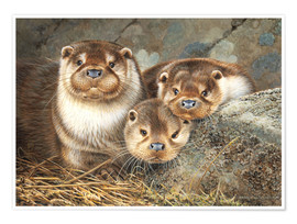 Premium poster  Otter family in the portrait