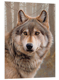 Forex  North American Wolf - Ikon Images