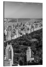 Aluminium print  Central Park in black and white - Walter Bibikow