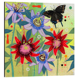 Aluminium print  Black swallowtail and passion flowers - Ikon Images