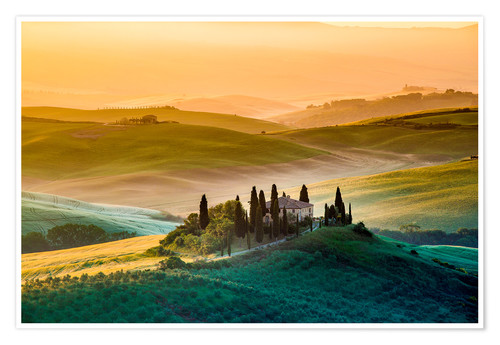 Premium poster A lonely farm with cypresses and olive trees