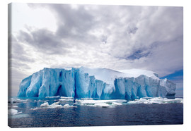 Canvas print  Ice floe in the Southern Ocean - Cultura/Seb Oliver