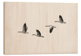 Wood  Four gray geese in flight - olbor