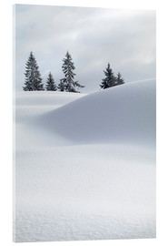 MITO images - Snow dunes with trees against sky
