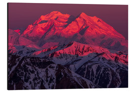 Aluminium print  Denali at sunrise - Steven Miley