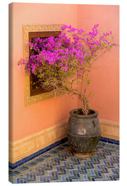 Canvas print  Bougainvillea in a Mediterranean ambience - Emily M. Wilson