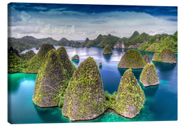Canvas  Indonesia, West Papua, Raja Ampat - Jones & Shimlock